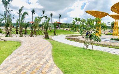Lộ diện tiềm năng bất động sản Bàu Bàng
